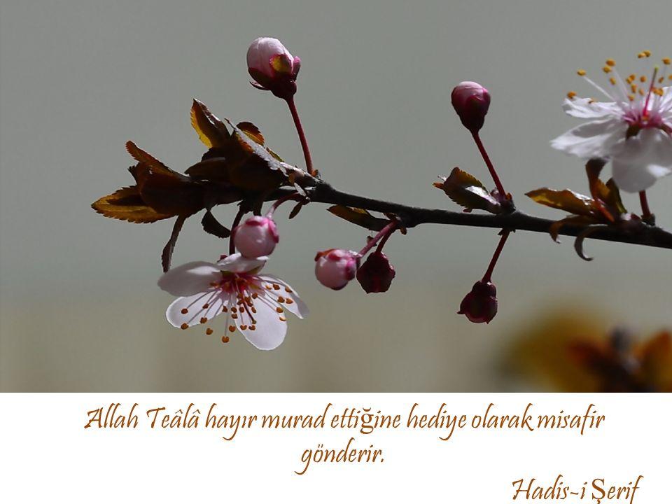 Allah Teâlâ hayır murad etti ğ ine hediye olarak misafir gönderir. Hadis-i Ş erif