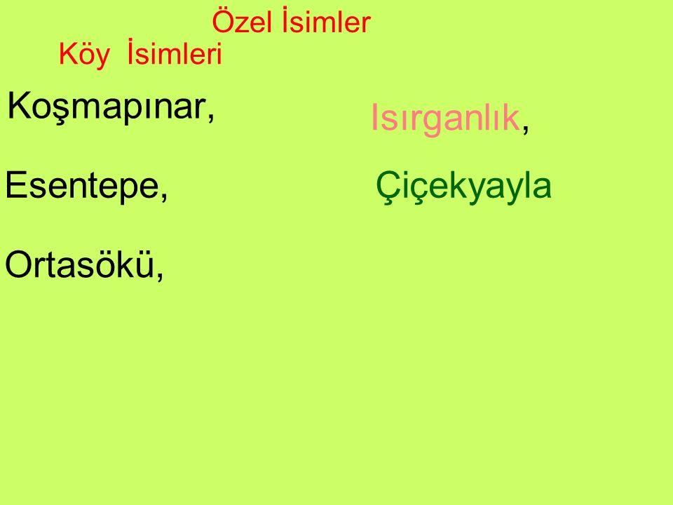 Koşmapınar, Özel İsimler Isırganlık, Esentepe,Çiçekyayla Ortasökü, Köy İsimleri