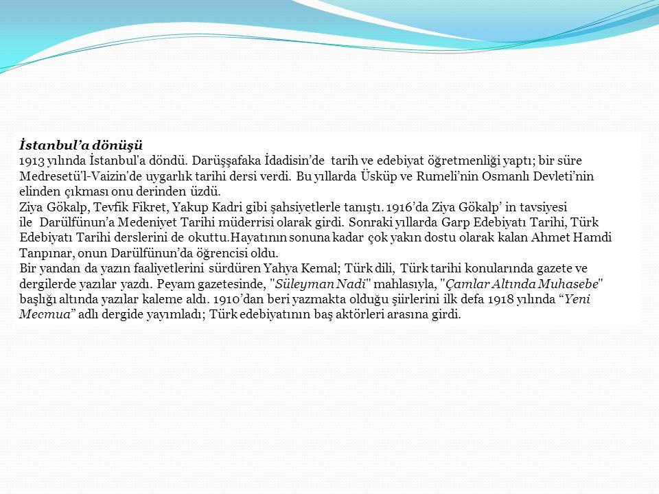 İstanbul'a dönüşü 1913 yılında İstanbul'a döndü. Darüşşafaka İdadisin'de tarih ve edebiyat öğretmenliği yaptı; bir süre Medresetü'l-Vaizin'de uygarlık