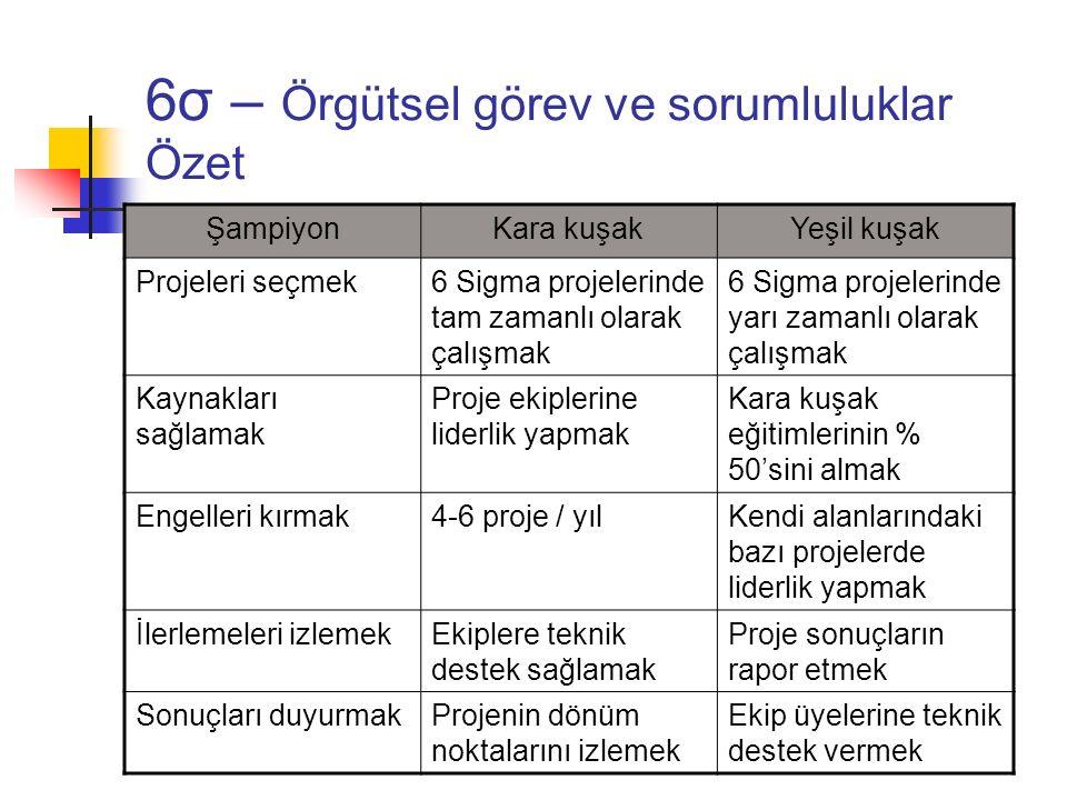 6σ – Örgütsel görev ve sorumluluklar Özet ŞampiyonKara kuşakYeşil kuşak Projeleri seçmek6 Sigma projelerinde tam zamanlı olarak çalışmak 6 Sigma proje