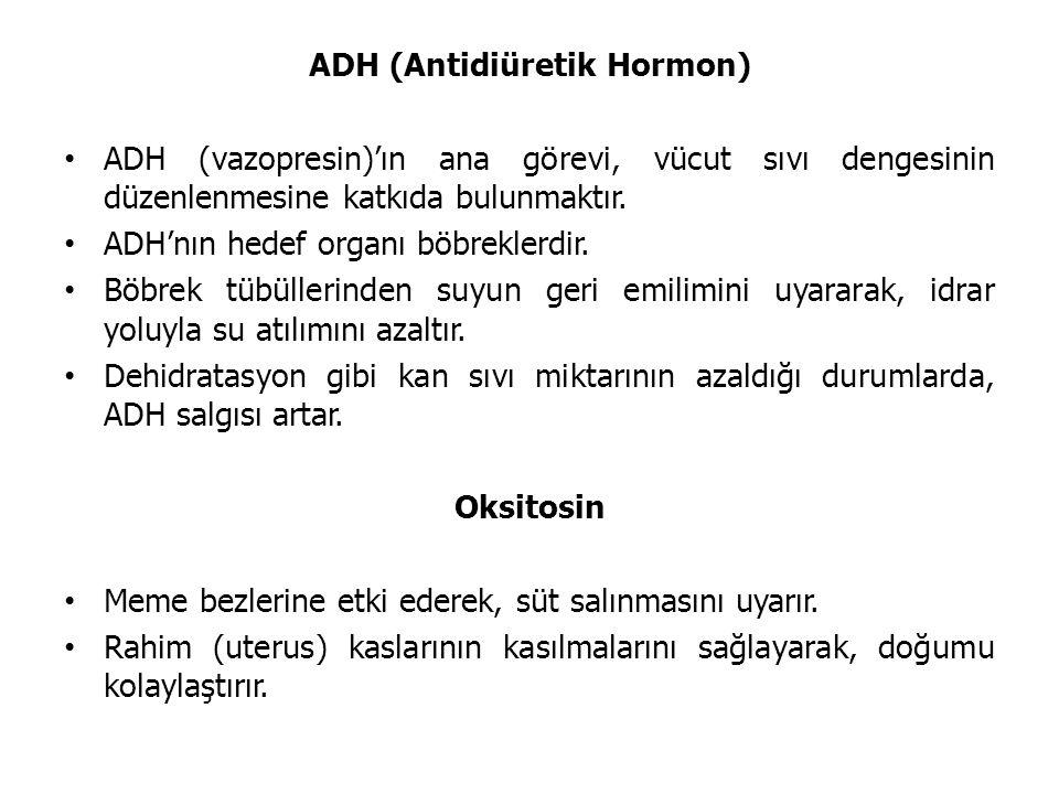 ADH (Antidiüretik Hormon) ADH (vazopresin)'ın ana görevi, vücut sıvı dengesinin düzenlenmesine katkıda bulunmaktır. ADH'nın hedef organı böbreklerdir.