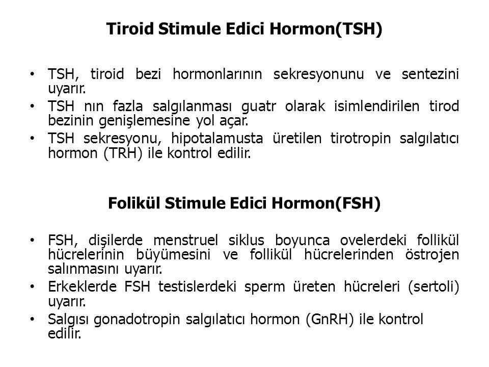 Tiroid Stimule Edici Hormon(TSH) TSH, tiroid bezi hormonlarının sekresyonunu ve sentezini uyarır.