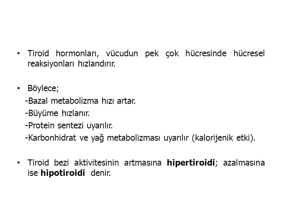 Tiroid hormonları, vücudun pek çok hücresinde hücresel reaksiyonları hızlandırır. Böylece; -Bazal metabolizma hızı artar. -Büyüme hızlanır. -Protein s