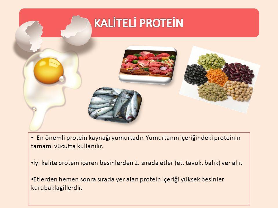 En önemli protein kaynağı yumurtadır. Yumurtanın içeriğindeki proteinin tamamı vücutta kullanılır. İyi kalite protein içeren besinlerden 2. sırada etl