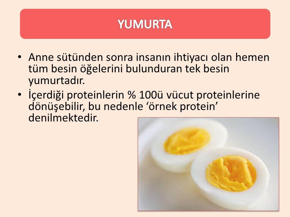 Anne sütünden sonra insanın ihtiyacı olan hemen tüm besin öğelerini bulunduran tek besin yumurtadır. İçerdiği proteinlerin % 100ü vücut proteinlerine