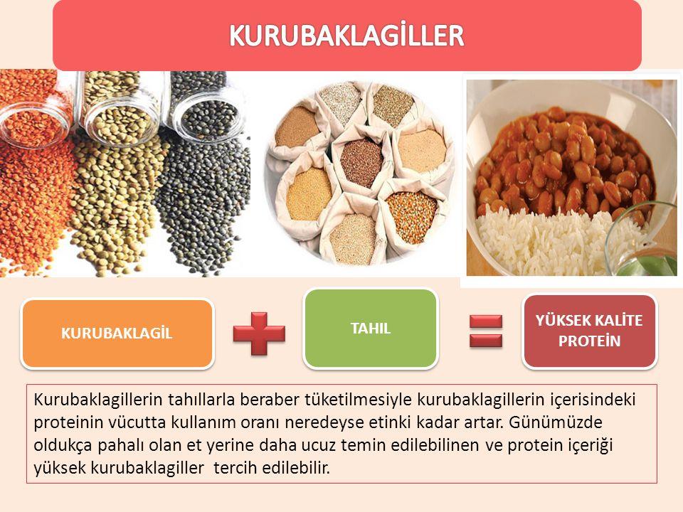 KURUBAKLAGİL TAHIL YÜKSEK KALİTE PROTEİN Kurubaklagillerin tahıllarla beraber tüketilmesiyle kurubaklagillerin içerisindeki proteinin vücutta kullanım