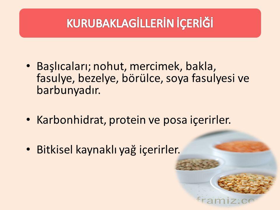 Başlıcaları; nohut, mercimek, bakla, fasulye, bezelye, börülce, soya fasulyesi ve barbunyadır. Karbonhidrat, protein ve posa içerirler. Bitkisel kayna