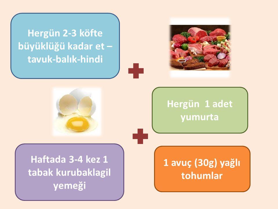 Hergün 2-3 köfte büyüklüğü kadar et – tavuk-balık-hindi Hergün 1 adet yumurta Haftada 3-4 kez 1 tabak kurubaklagil yemeği 1 avuç (30g) yağlı tohumlar