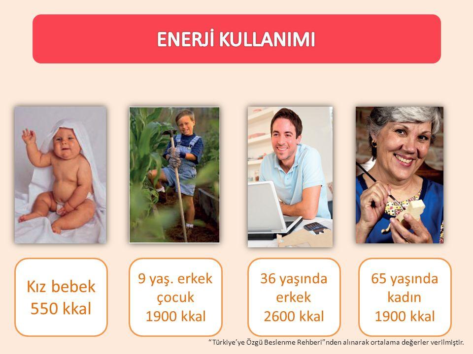 """Kız bebek 550 kkal 9 yaş. erkek çocuk 1900 kkal 36 yaşında erkek 2600 kkal 65 yaşında kadın 1900 kkal """"Türkiye'ye Özgü Beslenme Rehberi""""nden alınarak"""