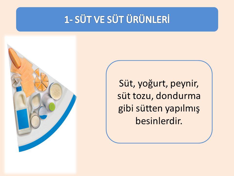 Süt, yoğurt, peynir, süt tozu, dondurma gibi sütten yapılmış besinlerdir.