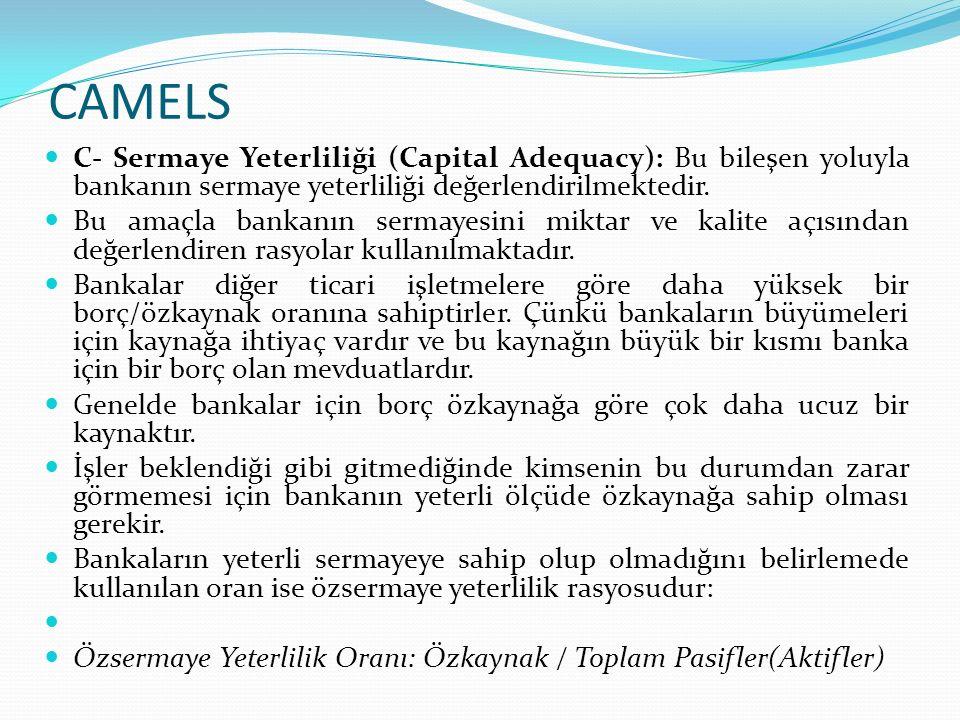 CAMELS Bankaların denetim ve gözetiminden sorumlu kamu yetkili organları (BDDK), tasarruf sahiplerinin haklarını korumak, finansal piyasalara güven sağlamak, bankaların varlıklarının tehlikeye düşmesini önlemek amacıyla bankaların daha fazla özkaynakla çalışmalarına yönelik düzenlemeler yapmaktadırlar.