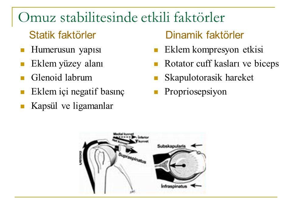 Omuz stabilitesinde etkili faktörler Statik faktörler Humerusun yapısı Eklem yüzey alanı Glenoid labrum Eklem içi negatif basınç Kapsül ve ligamanlar