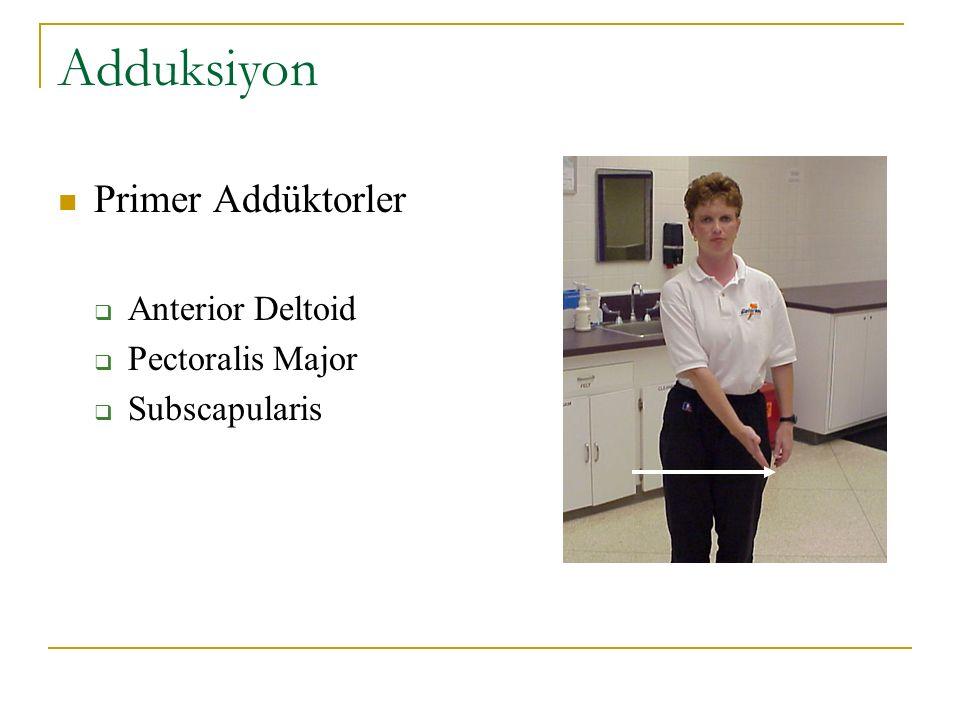 Adduksiyon Primer Addüktorler  Anterior Deltoid  Pectoralis Major  Subscapularis