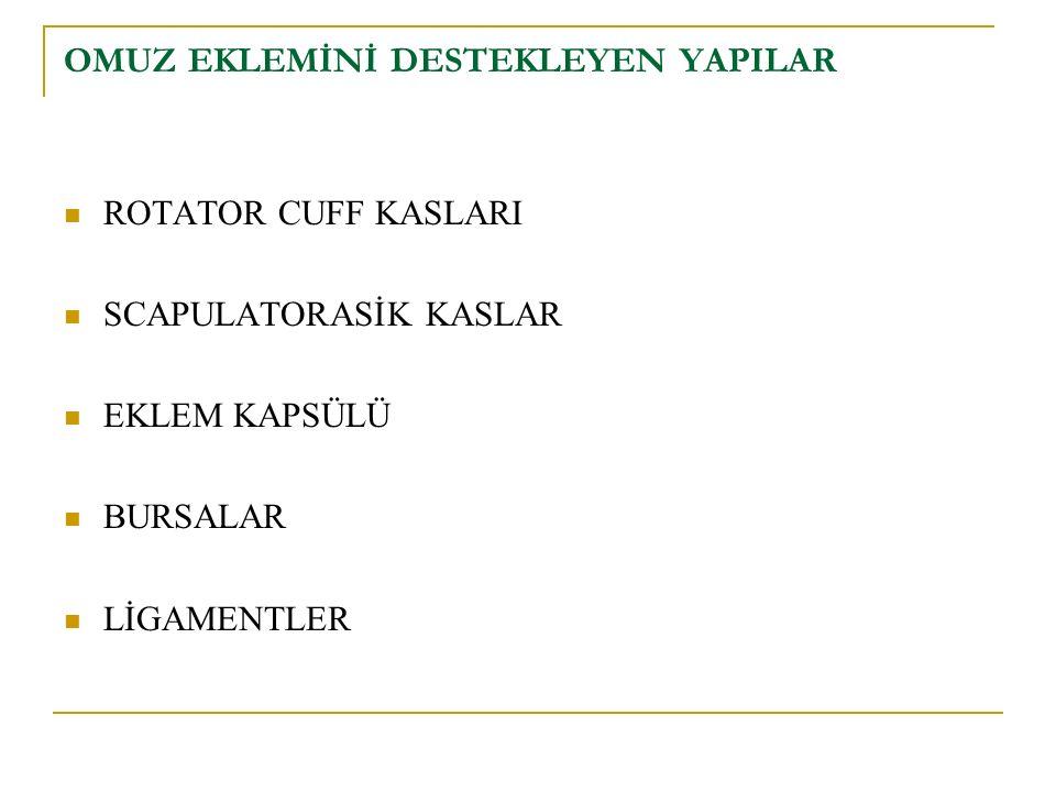 ROTATOR CUFF KASLARI M. SUBSCAPULARİS M. SUPRASPİNATUS M. İNFRASPİNATUS M. TERES MİNÖR
