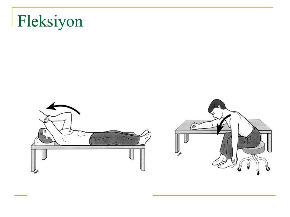 Fleksiyon