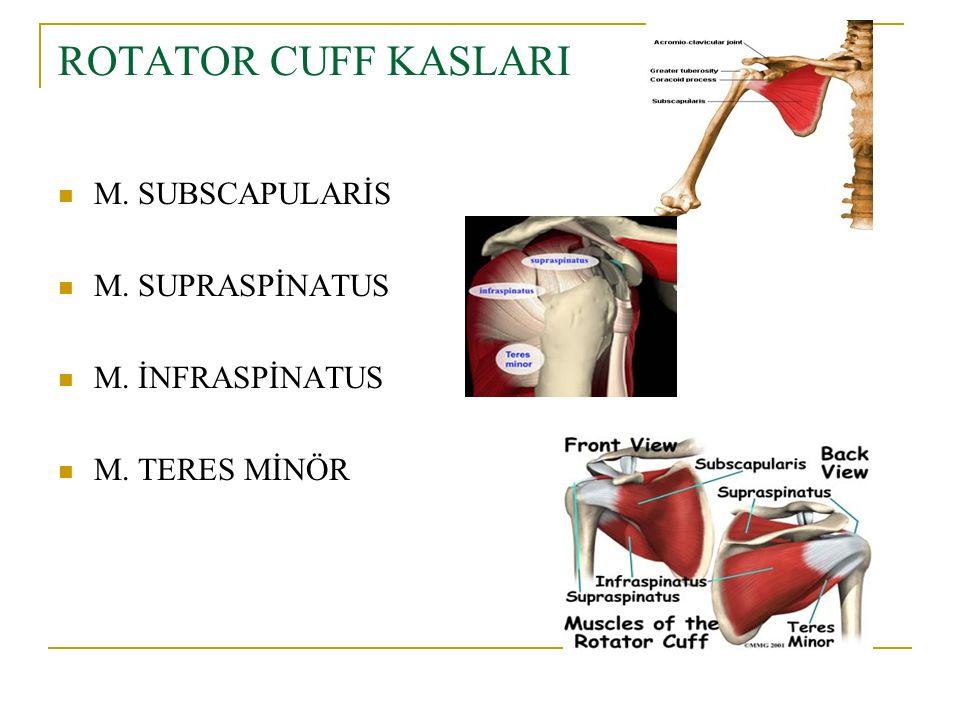 Komplikasyonlar Ağrı (gece ve gündüz ) Gerginlik Kuvvet kaybı Fonksiyonal limitasyon