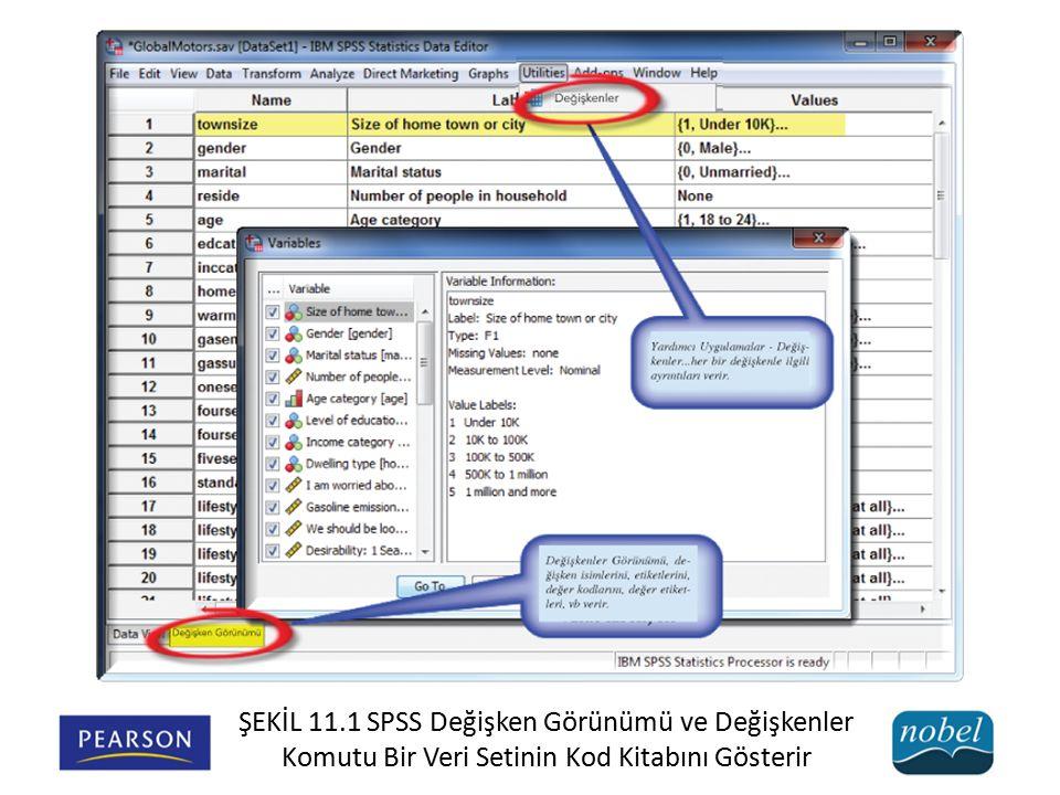 ŞEKİL 11.1 SPSS Değişken Görünümü ve Değişkenler Komutu Bir Veri Setinin Kod Kitabını Gösterir