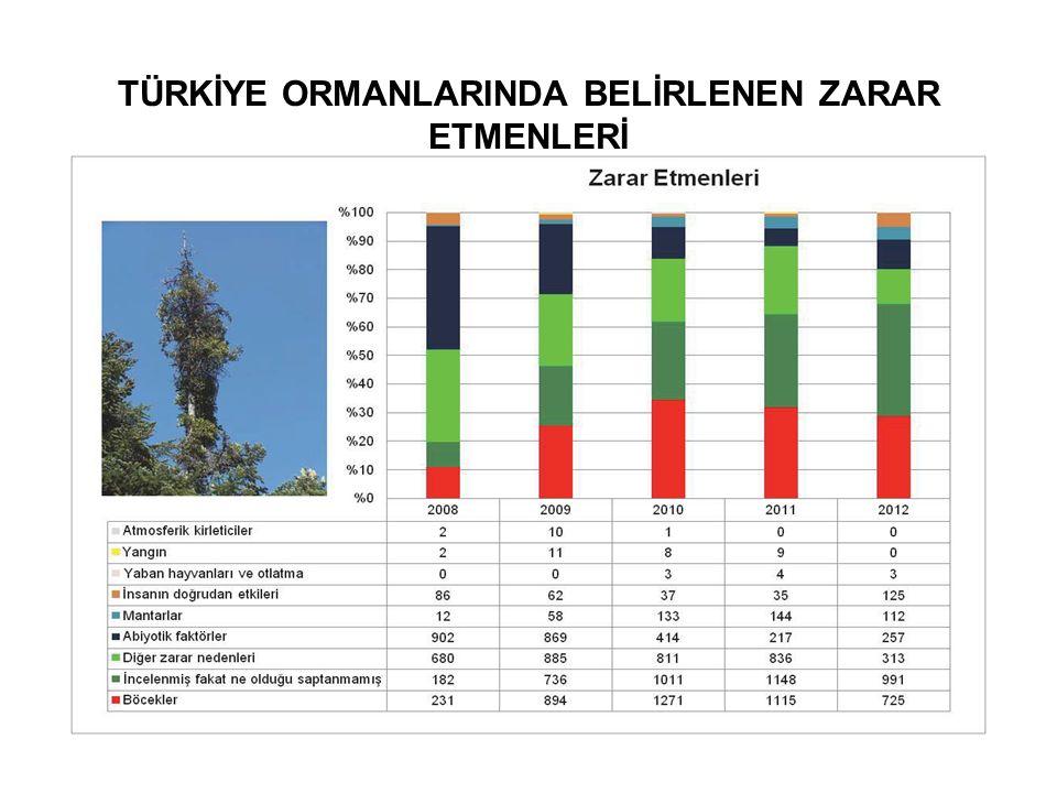 TÜRKİYE ORMANLARINDA BELİRLENEN ZARAR ETMENLERİ