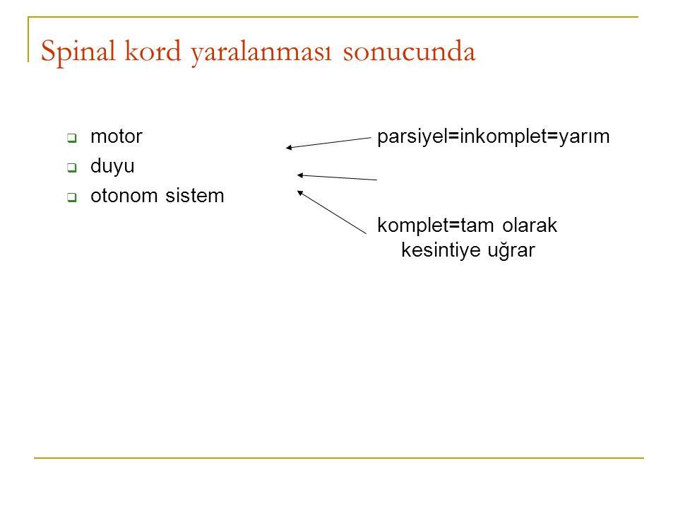 Spinal kord yaralanması sonucunda  motor  duyu  otonom sistem parsiyel=inkomplet=yarım komplet=tam olarak kesintiye uğrar