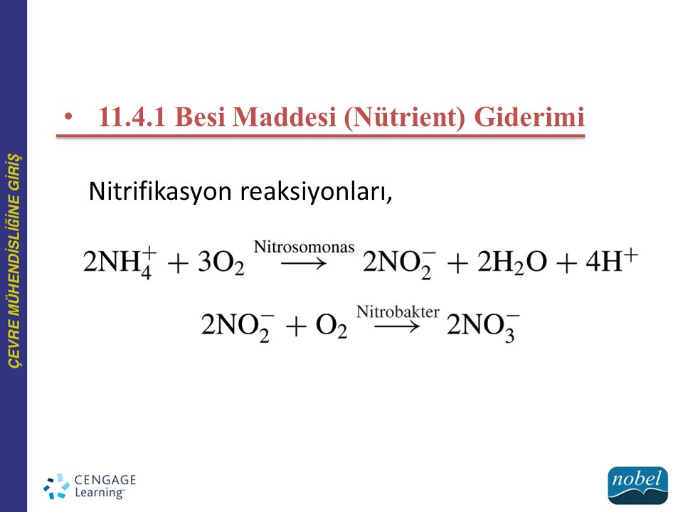 11.4.1 Besi Maddesi (Nütrient) Giderimi Nitrifikasyon reaksiyonları,