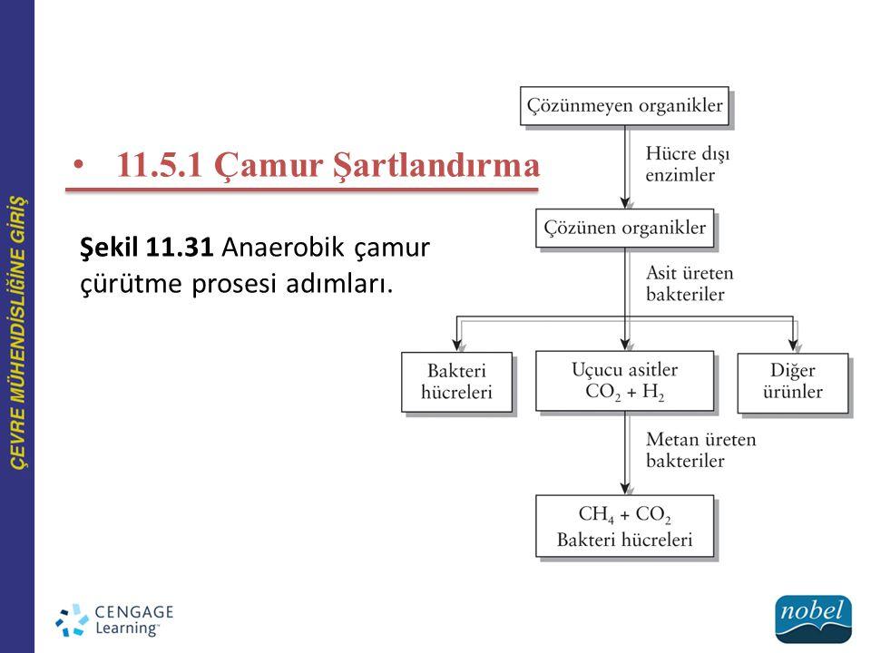 Şekil 11.31 Anaerobik çamur çürütme prosesi adımları. 11.5.1 Çamur Şartlandırma
