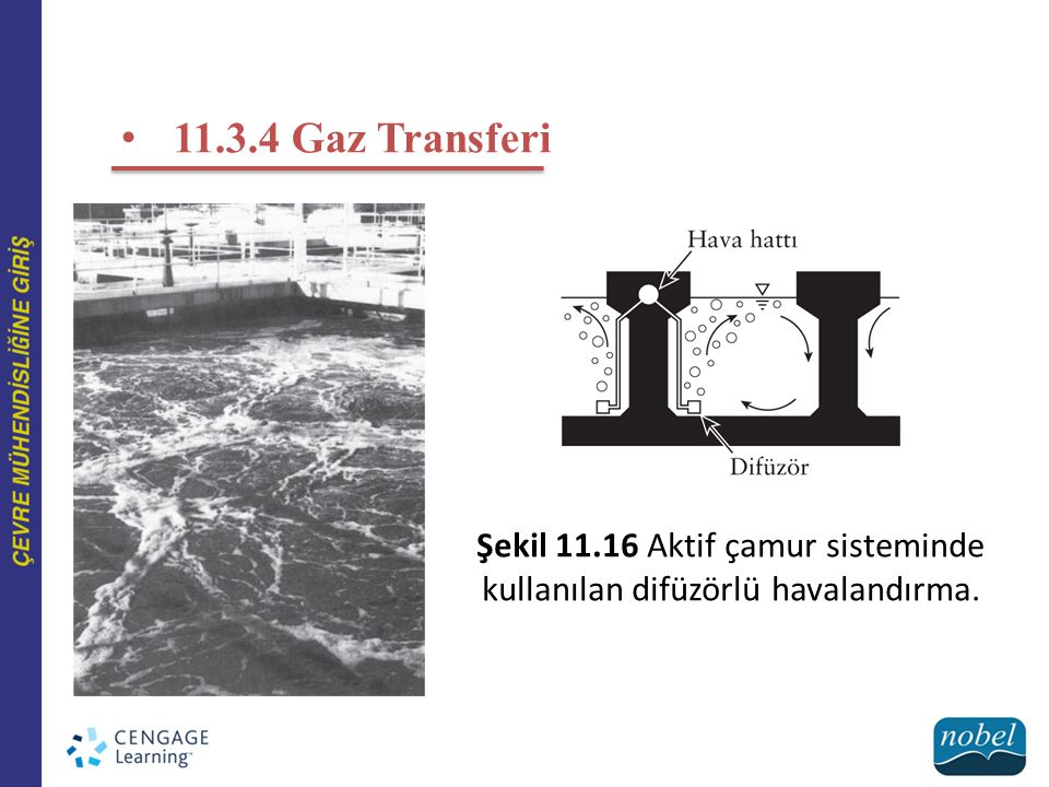 11.3.4 Gaz Transferi Şekil 11.16 Aktif çamur sisteminde kullanılan difüzörlü havalandırma.