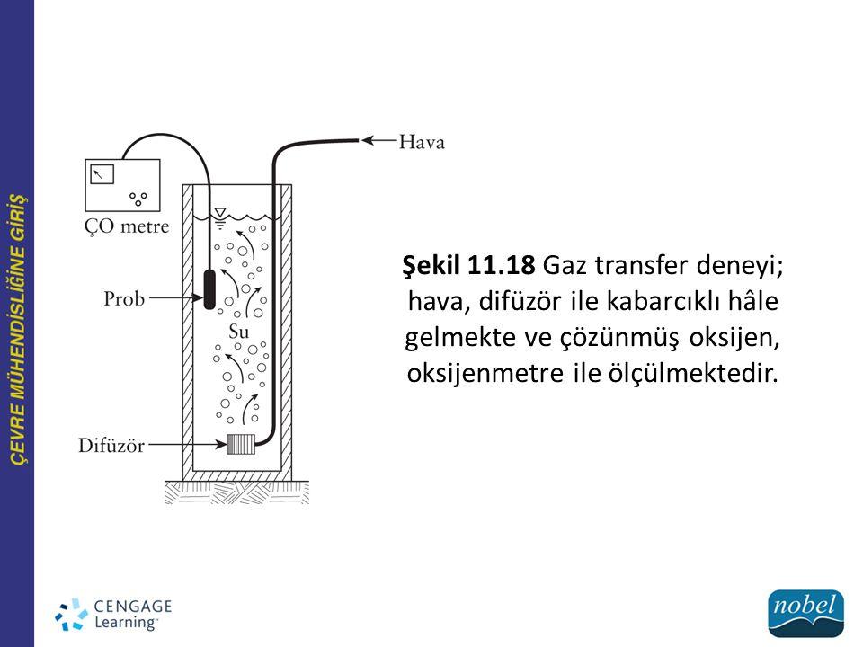 Şekil 11.27 Yüzey altı akışlı yapay sulak alan.