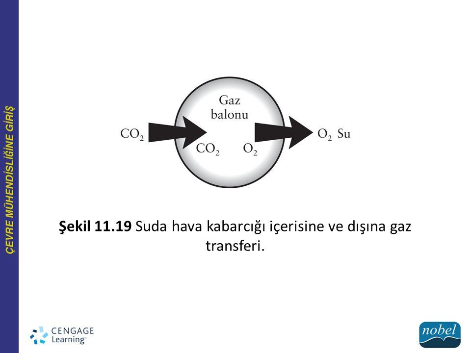Şekil 11.19 Suda hava kabarcığı içerisine ve dışına gaz transferi.