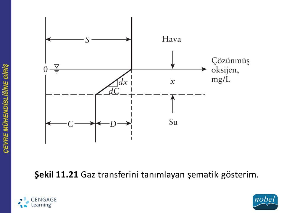 11.3.5 Katıların Ayrılması Şekil 11.23 Filamentli bakteri: (A) Sphaerotilus natans; (B) Nacardia form.