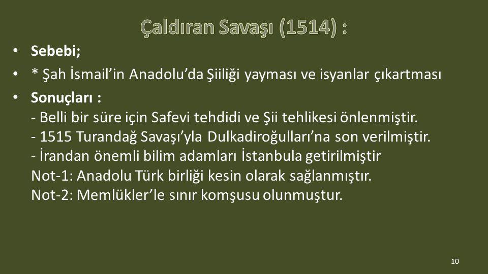 Sebebi; * Şah İsmail'in Anadolu'da Şiiliği yayması ve isyanlar çıkartması Sonuçları : - Belli bir süre için Safevi tehdidi ve Şii tehlikesi önlenmiştir.