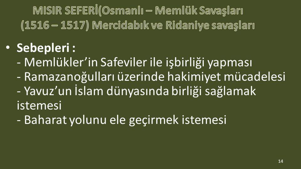 Sebepleri : - Memlükler'in Safeviler ile işbirliği yapması - Ramazanoğulları üzerinde hakimiyet mücadelesi - Yavuz'un İslam dünyasında birliği sağlamak istemesi - Baharat yolunu ele geçirmek istemesi 14