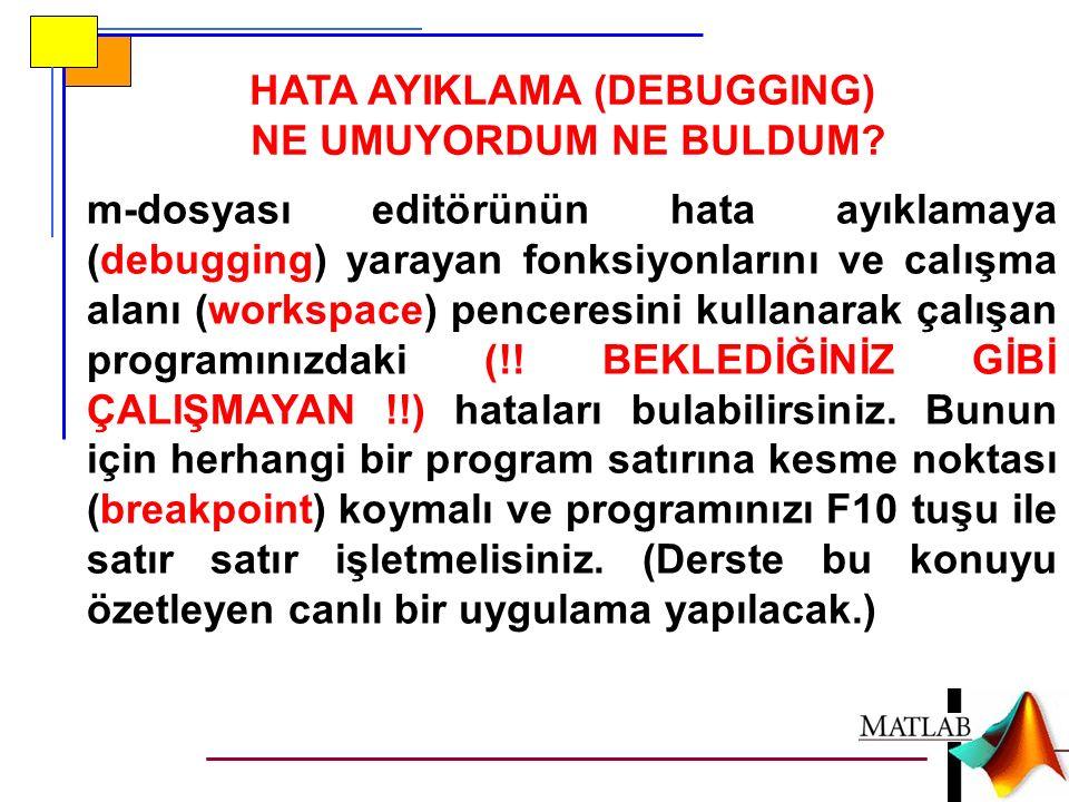 HATA AYIKLAMA (DEBUGGING) NE UMUYORDUM NE BULDUM.