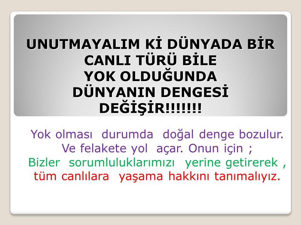 UNUTMAYALIM Kİ DÜNYADA BİR CANLI TÜRÜ BİLE YOK OLDUĞUNDA DÜNYANIN DENGESİ DEĞİŞİR!!!!!!.