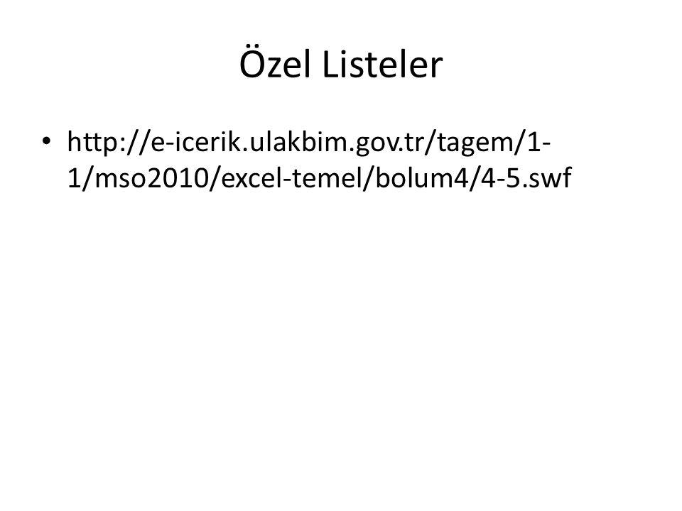 Özel Listeler http://e-icerik.ulakbim.gov.tr/tagem/1- 1/mso2010/excel-temel/bolum4/4-5.swf