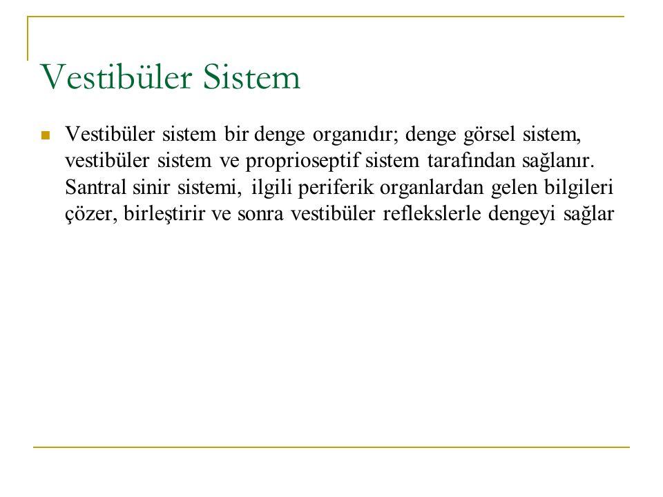 Vestibüler Sistem Vestibüler sistem bir denge organıdır; denge görsel sistem, vestibüler sistem ve proprioseptif sistem tarafından sağlanır.