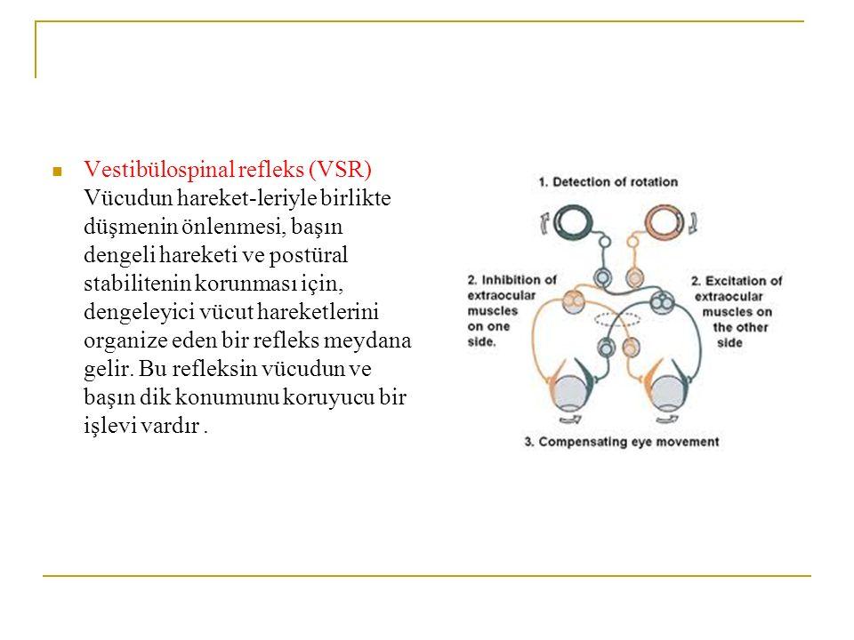 Vestibülospinal refleks (VSR) Vücudun hareket-leriyle birlikte düşmenin önlenmesi, başın dengeli hareketi ve postüral stabilitenin korunması için, dengeleyici vücut hareketlerini organize eden bir refleks meydana gelir.