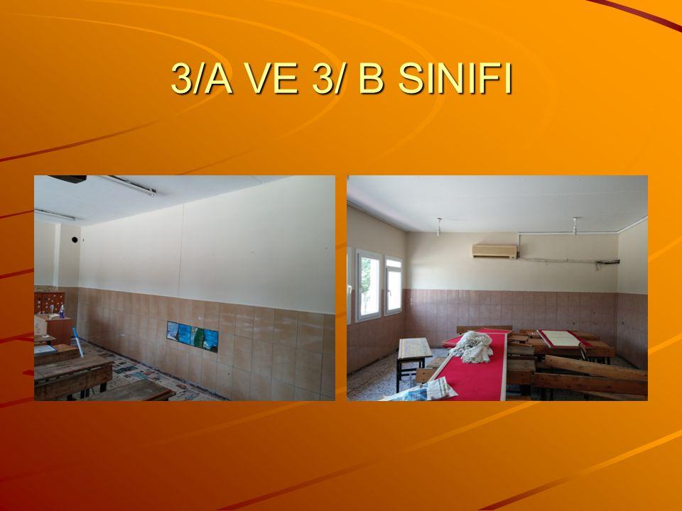 3/A VE 3/ B SINIFI