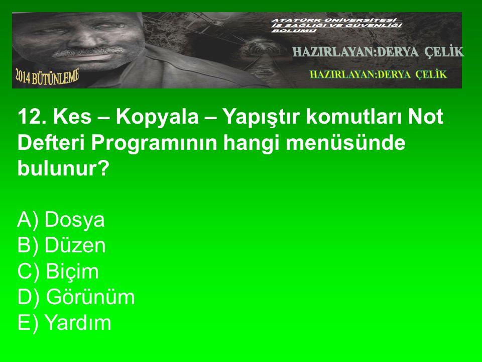 12. Kes – Kopyala – Yapıştır komutları Not Defteri Programının hangi menüsünde bulunur.