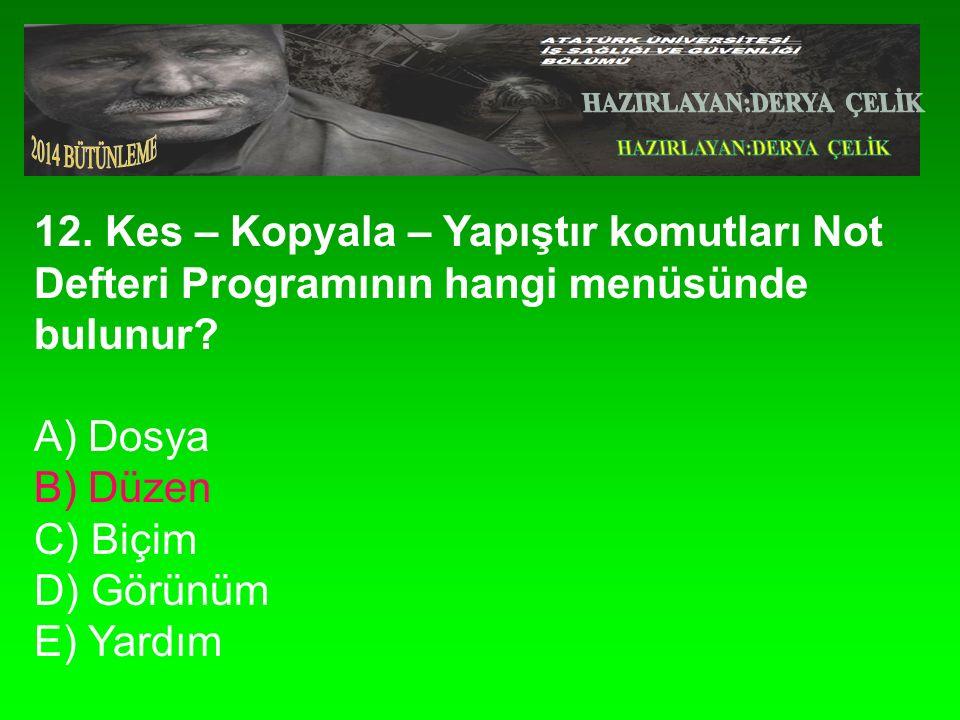 12.Kes – Kopyala – Yapıştır komutları Not Defteri Programının hangi menüsünde bulunur.