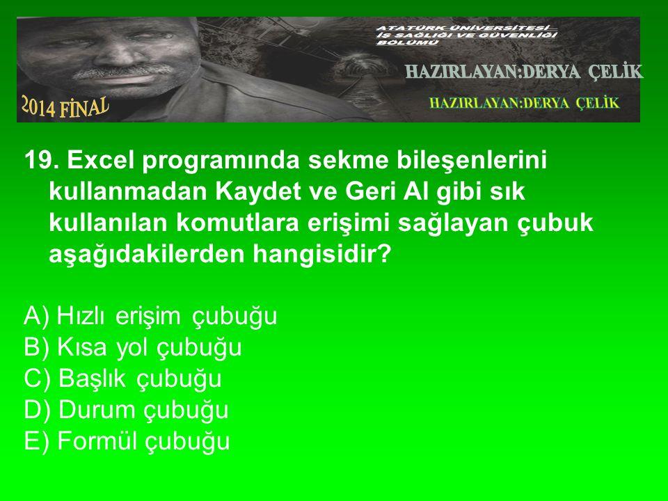19. Excel programında sekme bileşenlerini kullanmadan Kaydet ve Geri Al gibi sık kullanılan komutlara erişimi sağlayan çubuk aşağıdakilerden hangisidi