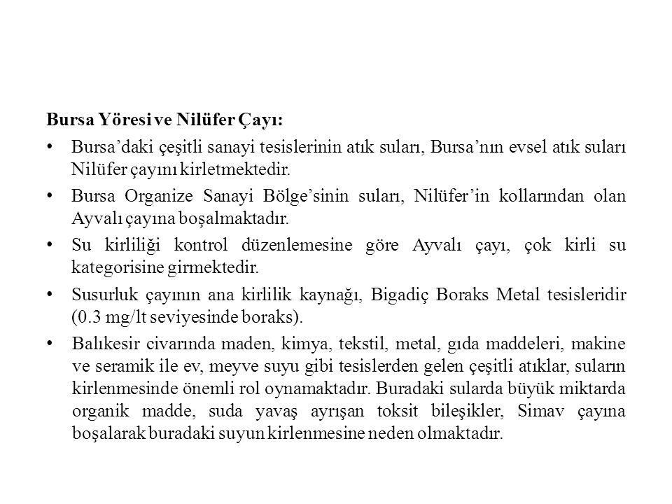 Bursa Yöresi ve Nilüfer Çayı: Bursa'daki çeşitli sanayi tesislerinin atık suları, Bursa'nın evsel atık suları Nilüfer çayını kirletmektedir.