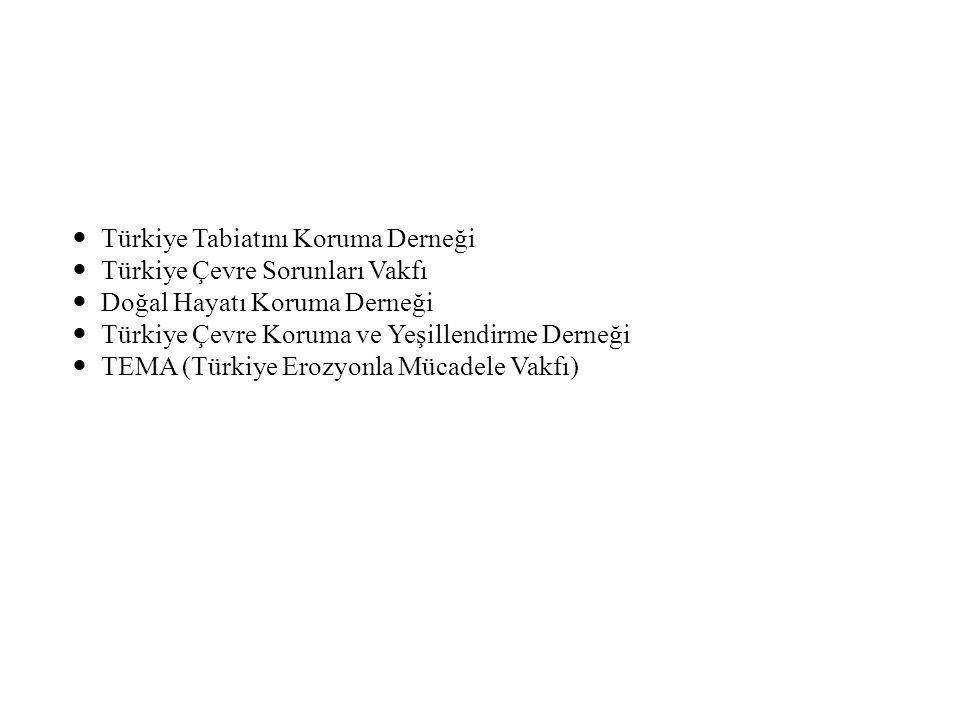 Türkiye Tabiatını Koruma Derneği Türkiye Çevre Sorunları Vakfı Doğal Hayatı Koruma Derneği Türkiye Çevre Koruma ve Yeşillendirme Derneği TEMA (Türkiye Erozyonla Mücadele Vakfı)
