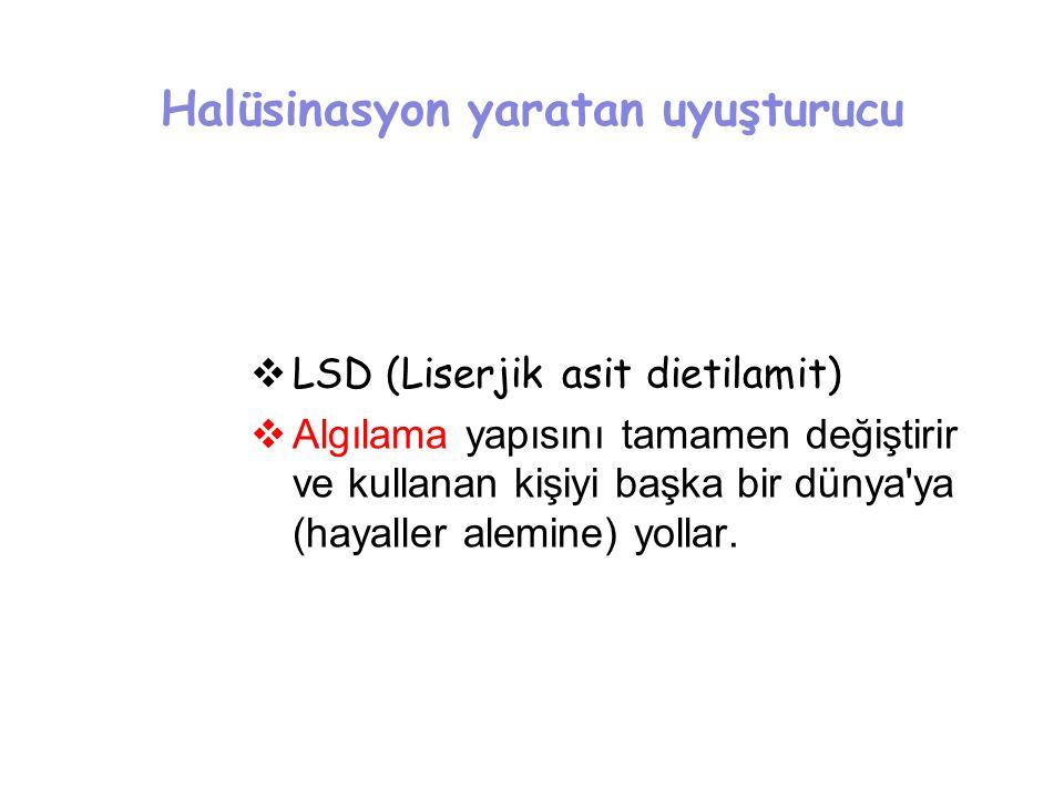 Halüsinasyon yaratan uyuşturucu  LSD (Liserjik asit dietilamit)  Algılama yapısını tamamen değiştirir ve kullanan kişiyi başka bir dünya'ya (hayalle