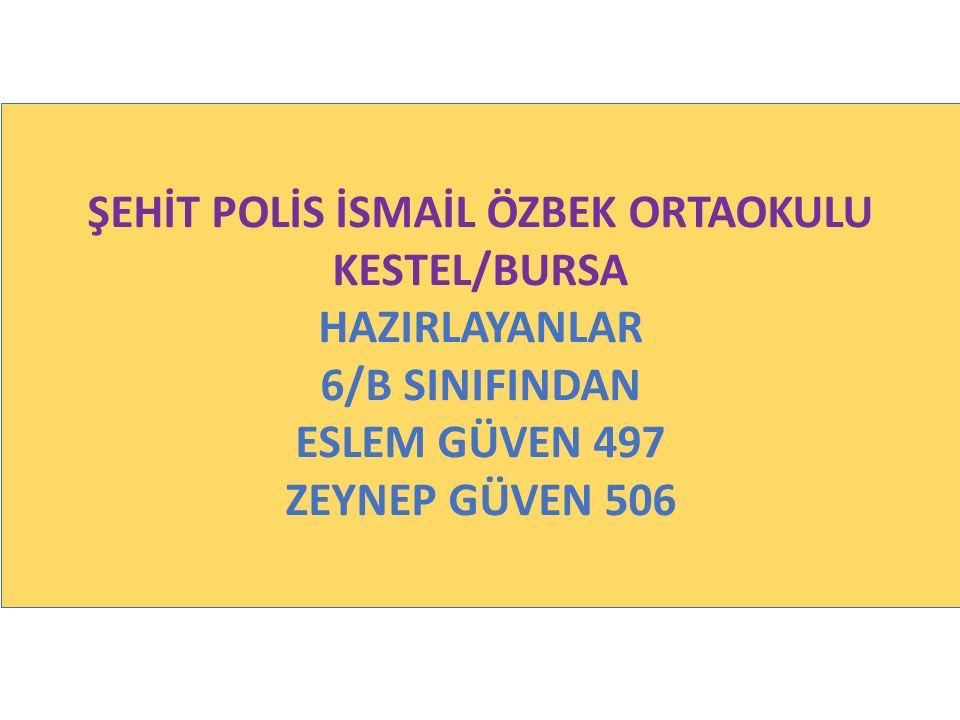 ŞEHİT POLİS İSMAİL ÖZBEK ORTAOKULU KESTEL/BURSA HAZIRLAYANLAR 6/B SINIFINDAN ESLEM GÜVEN 497 ZEYNEP GÜVEN 506