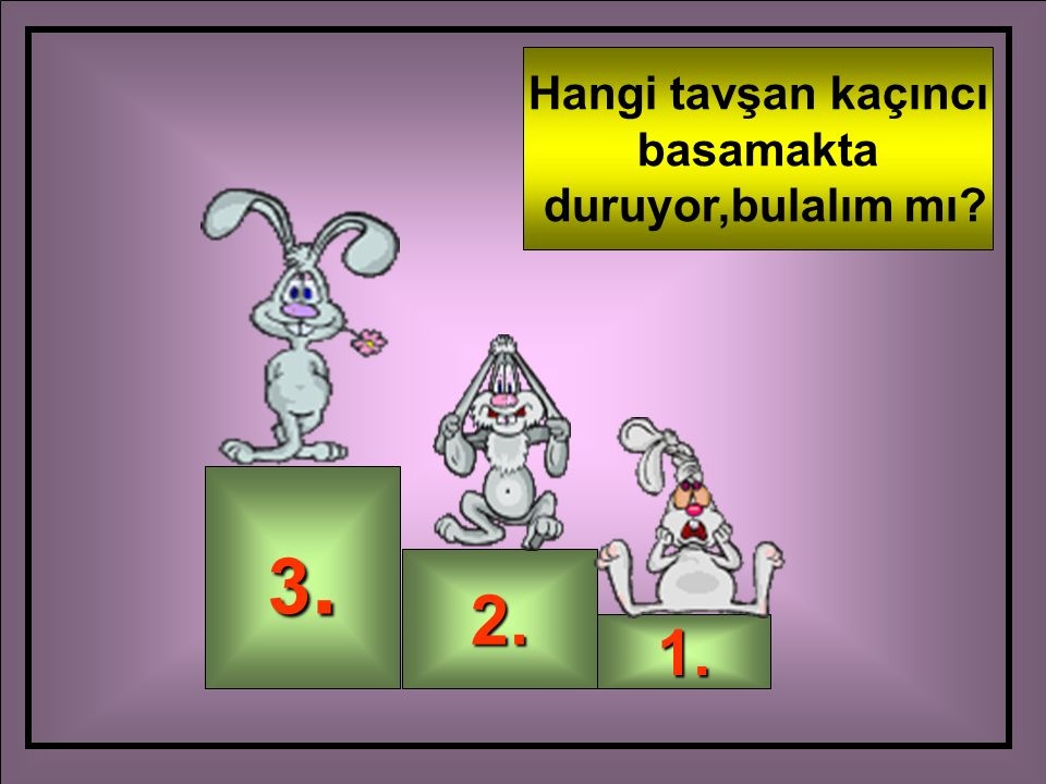 3.3.3.3. 2. 1. Hangi tavşan kaçıncı basamakta duruyor,bulalım mı?