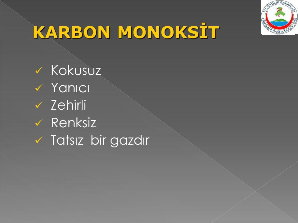 Kokusuz Yanıcı Zehirli Renksiz Tatsız bir gazdır KARBON MONOKSİT