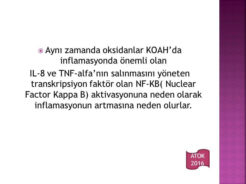  Aynı zamanda oksidanlar KOAH'da inflamasyonda önemli olan IL-8 ve TNF-alfa'nın salınmasını yöneten transkripsiyon faktör olan NF-KB( Nuclear Factor Kappa B) aktivasyonuna neden olarak inflamasyonun artmasına neden olurlar.