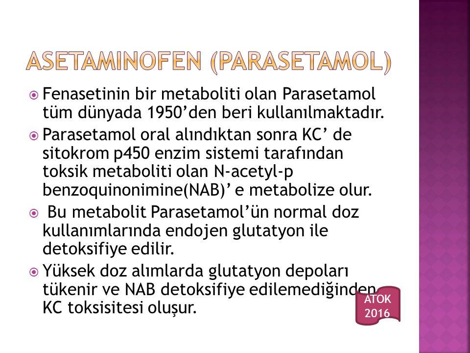 Fenasetinin bir metaboliti olan Parasetamol tüm dünyada 1950'den beri kullanılmaktadır.