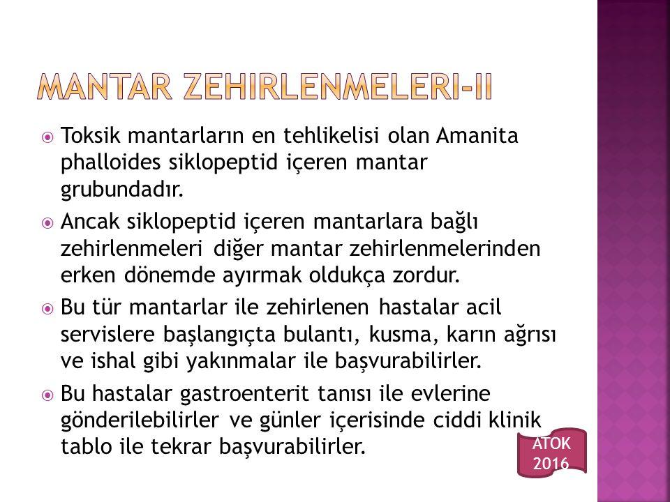  Toksik mantarların en tehlikelisi olan Amanita phalloides siklopeptid içeren mantar grubundadır.