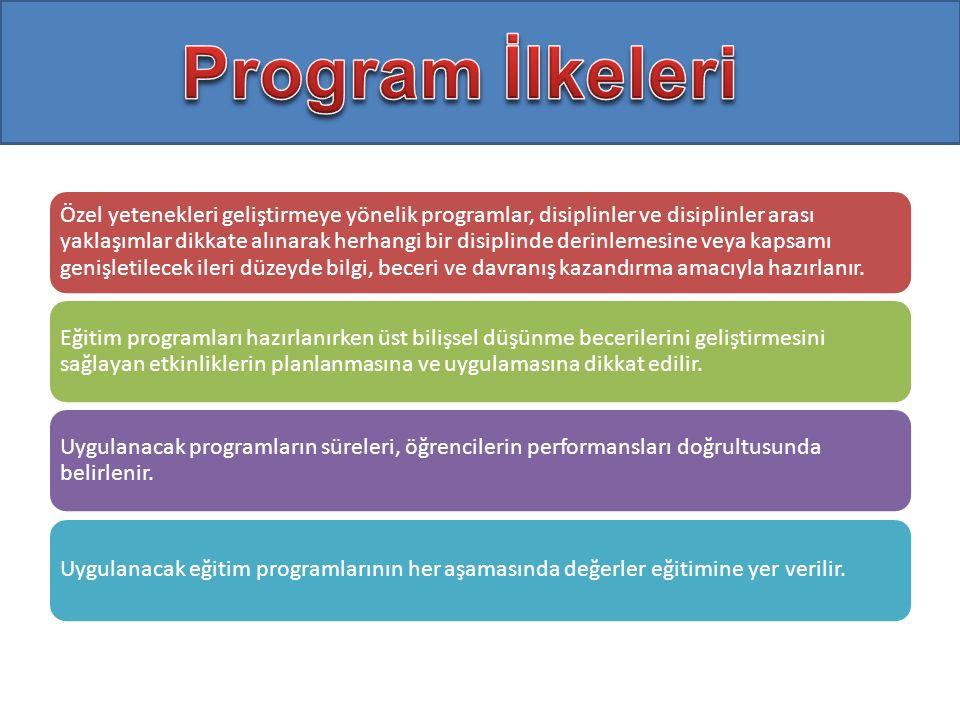 Özel yetenekleri geliştirmeye yönelik programlar, disiplinler ve disiplinler arası yaklaşımlar dikkate alınarak herhangi bir disiplinde derinlemesine